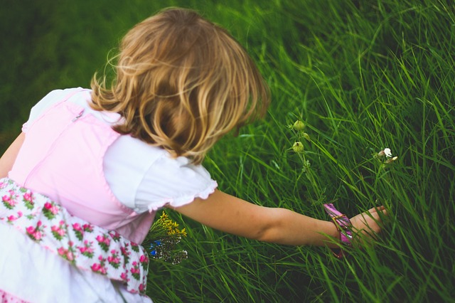 Photo of child picking flowers in a field of grass